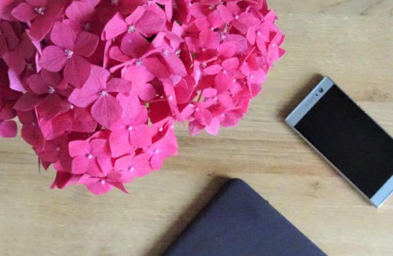 Bloggen volhouden kosten levert op creatieve teksten nieuwsbrief versturen